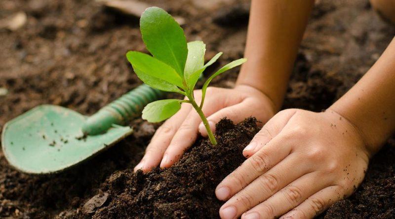 [Agroecología] Organizaciones chivilcoyanas impulsan la práctica responsable y el fomento a la producción local sustentable