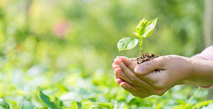 [Ambiente y Agroquímicos] Comunicado de la Mesa de Trabajo ad hoc en Chivilcoy